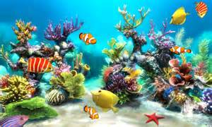 Sim Aquarium   Android Apps on Google Play