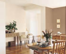 warm brown interior inspirations paint