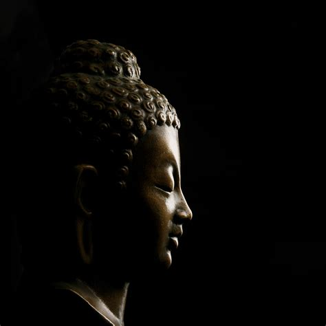 Pictures Of Livingrooms by Buddha On Black Wallpaper For Decor