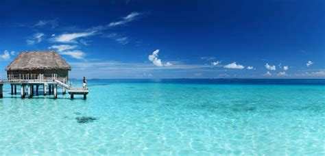 Ile De Tahit Tatahi Bora Bora by S 233 Jour 5 238 Les Tahiti Moorea Bora Bora Rangiroa Tikehau