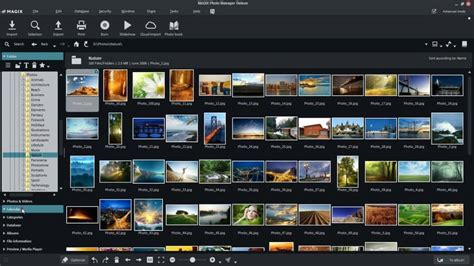 best free manager for windows 7 best free photo organizer software for windows 10 8 7 in