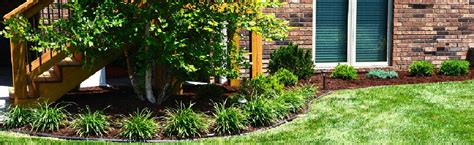 tree and landscape shrub installation springfield mo