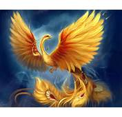 Phoenix The Immortal A Universal Sacred Spirit Most Detailed
