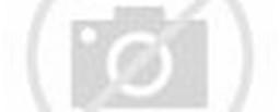 Crosman M417 .177 BB / Pellet Rifle – Glasgow Angling Centre