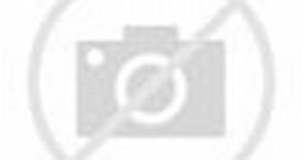 Muslim Shia and Sunni World Map