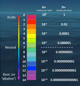 Figure 1 the ph scale by numbers