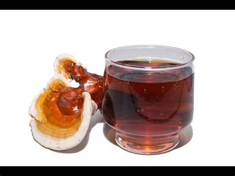Reishi Liver Detox by How The Reishi Helps Fight Cancer Boost Immunity