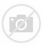 Indonesia National Symbol