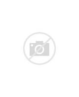 skye paw patrol colouring pages