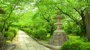 Expedia Car Rental Japan Kyoto Car Rental Find Cheap Car Hire In Kyoto Japan