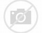 Animated Horse Moving Graphics