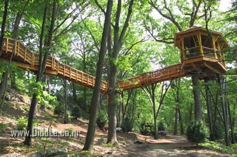 best tree houses best tree houses ever built xcitefun net