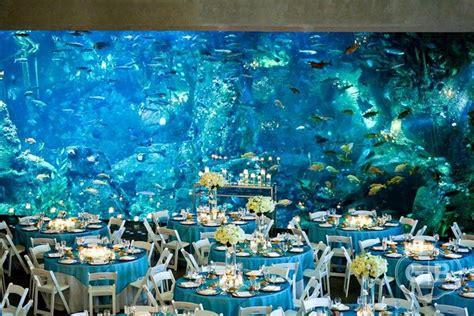 wedding reception new aquarium pin by yva shoop on destination wedding dreams