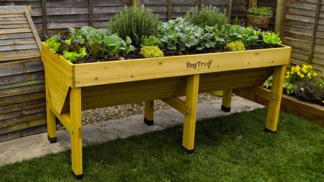 Vegetable Planters Vegtrug Vegetable Planter Dudeiwantthat