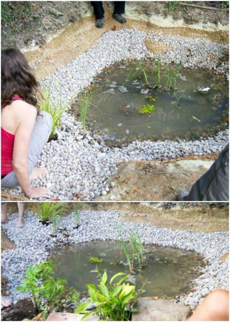 charming diy garden pond ideas