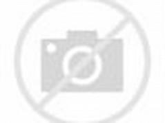 Tree Growing around Motorcycle