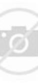 Desain Baju Pesta, Kebaya Modern dan Gaun Pengantin: Baju Pesta Brokat ...