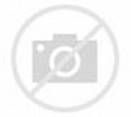 Perkenalkan Inilah Bumi Kalimantan Barat