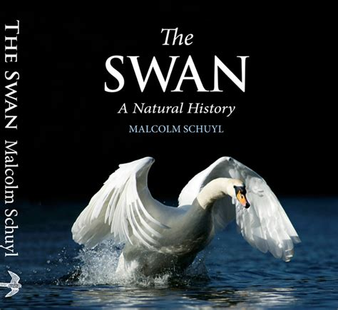 the swan book a novel books malcolm schuyl wildlife photography new book published