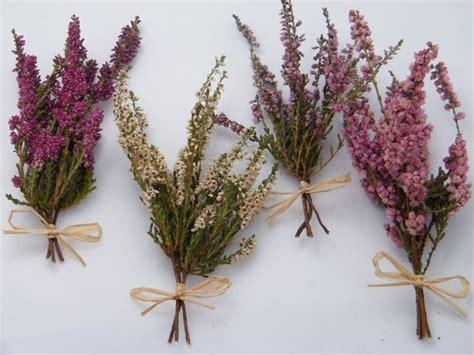 come seccare i fiori fiori secchi essicazione fiori