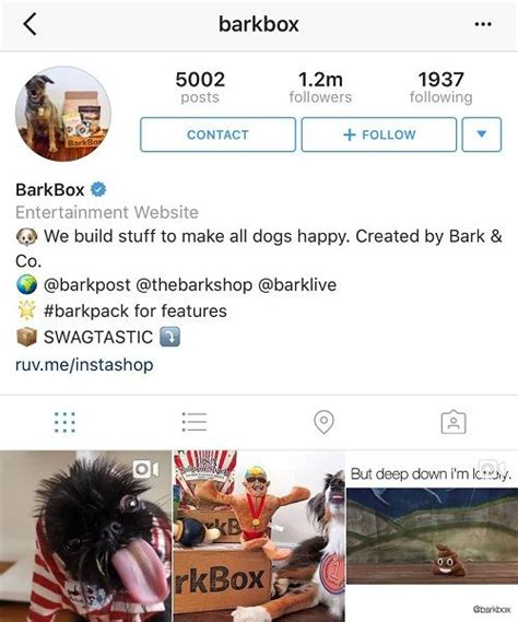 good bio for instagram exle how to write good instagram bios that attract more