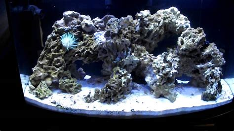 How To Make An Aquascape Dry Rock Experience Youtube
