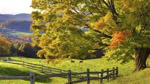 Grazing field landscape desktop background wallpapercow com