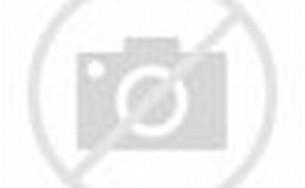 Pin Denah Type 48 Rumah Minimalis on Pinterest
