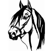 Horse Wall Stickers  Or WALL Decal 13 Decals Animal