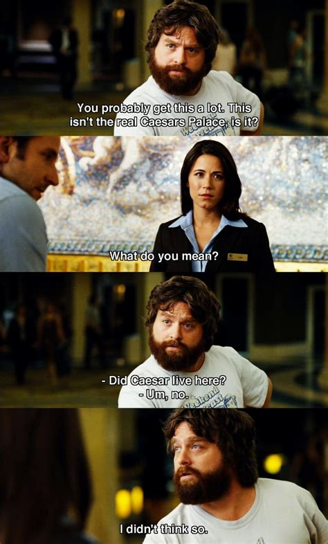 film quotes uk 31 best film the hangover images on pinterest hangover