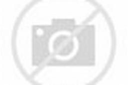 Korean model Ju Da Ha stood for Infiniti G Racing Limited Edition, she ...