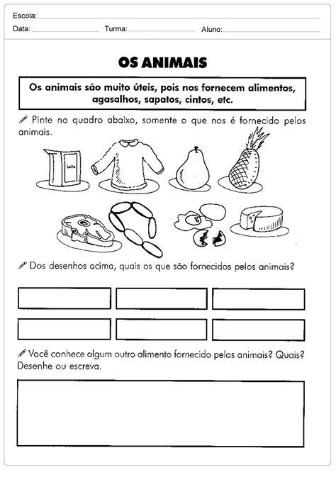 Meio Ambiente - Os animais - Escola Educação