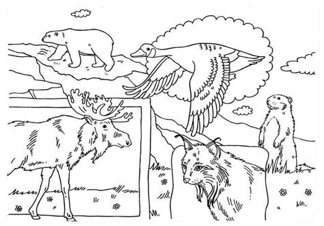canada free colouring pages