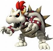User TalkDry Bowser Rules  Super Mario Wiki The Encyclopedia
