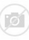 Koleksi Gambar Terumbu Karang (Coral Reef) | Alamendah's Blog