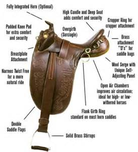 Information about australian saddles and tack