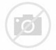 Most Brutal Death Metal Albums