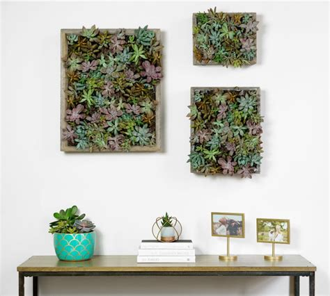blog how to prepare your wall for a smart tiles peel and how to make a succulent wall garden proflowers