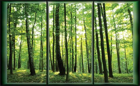forest trees green nature wall paper mural buy at