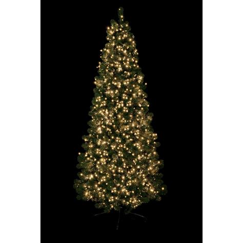 premier traditions christmas lights premier decorations 1500 traditional golden glow led treebrights with multi facility