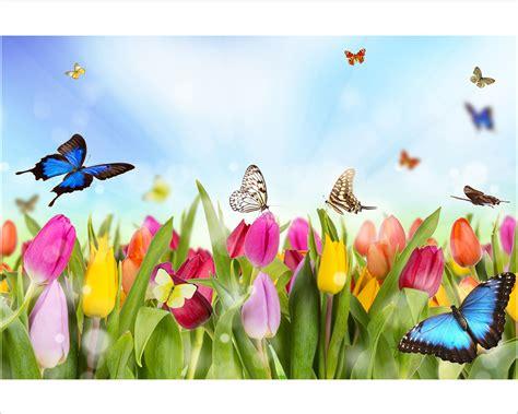 fiori e farfalle tulipani e farfalle fiori sta su tela interni