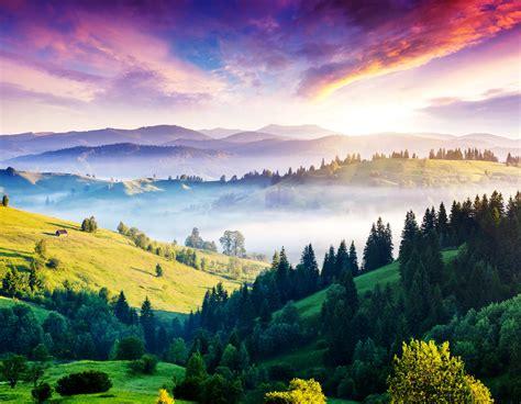 wallpaper carpathians   wallpaper pines hills