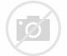 Koleksi Foto Ayam: Koleksi Foto Ayam