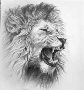 Pencil drawings of lions roaring roaring lion pencil drawing on