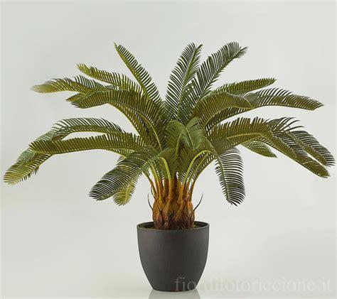 fiori riccione palma cycas fiori e piante artificiali fiori