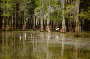 Pin the location of the atchafalaya river basin in the state of
