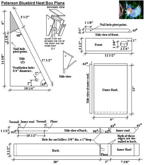 Peterson Bluebird Bird House Plans Diy Birdhouses Bluebird House Plans