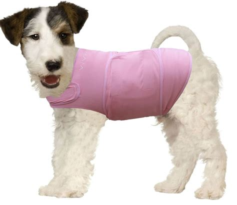 puppy anxiety top 5 anxiety vests to calm stressed dogs