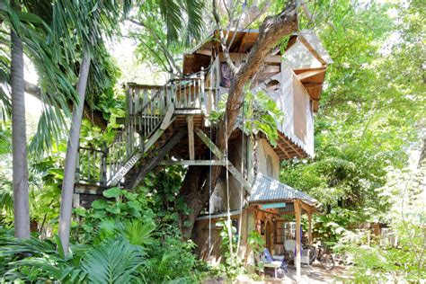 airbnb florida book an unforgettable night in this incredible tree house