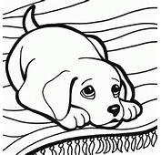 Dibujos De Mascotas Cachorro Perro